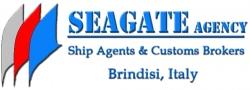 Seagate sas